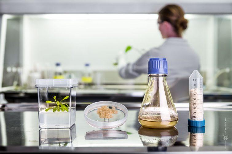 Im Forschungslabor werden Pflanzen zu Pulver verarbeitet. | © Eric Shambroom Photography